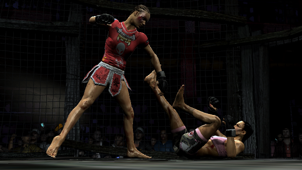 MMA Video Game