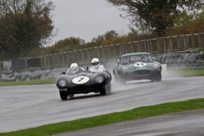 Jaguar-DTYPE-ETYPE-Goodwood