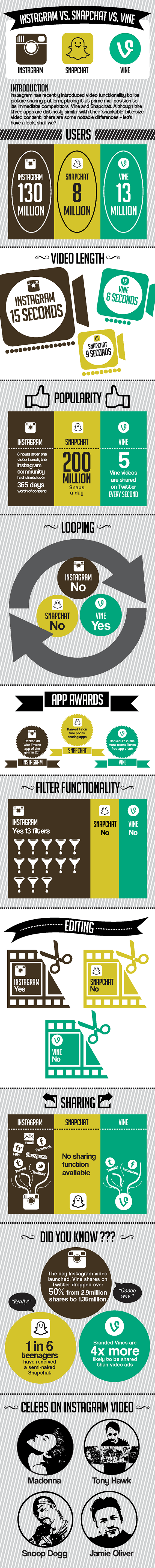 social-video-infographic