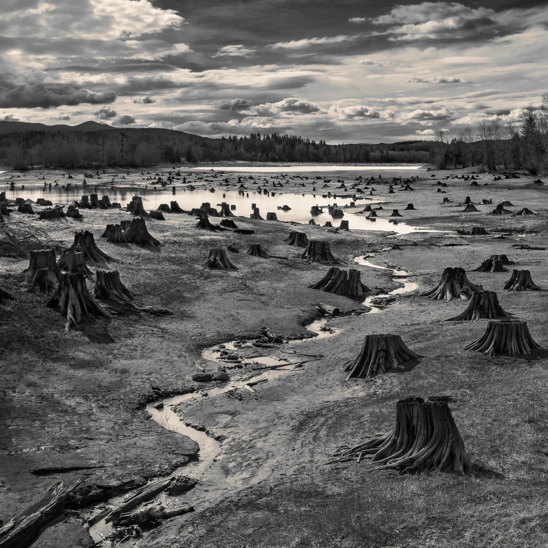 sony-world-photography-awards-2019-open-hal-gage-landscape