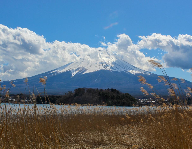 Lake Kawaguchiko Mount Fuji
